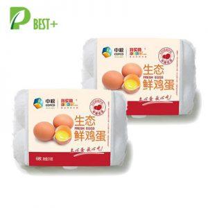 egg cartons