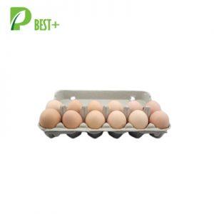 pulp egg boxes