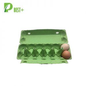 12 Pulp Eggs Cartons Tray