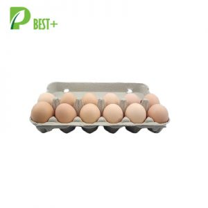 Pulp Dozen Eggs Cartons