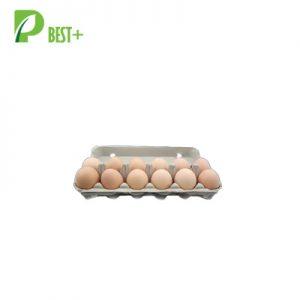 12 eggs pulp cartons Tray