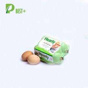 6 Eggs Pulp Cartons Box 182