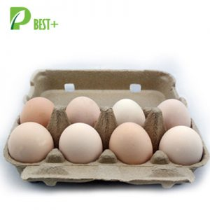 8 eggs pulp cartons Tray
