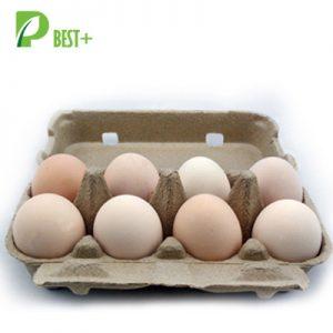 8 eggs pulp cartons Tray