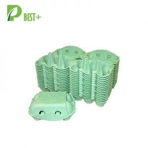 Green 6 Eggs Pulp Cartons