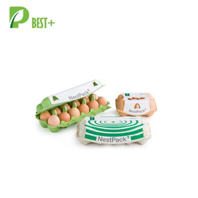 Pulp Cardboard Egg Boxes 197