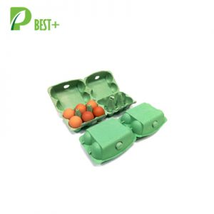 Disposable Pulp Green Egg Box 195
