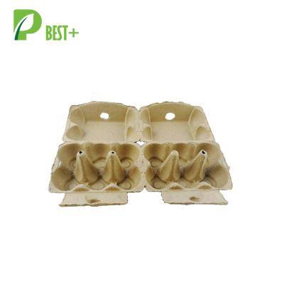 eggs cartons