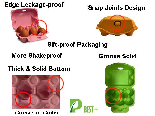 Egg Carton 240//Box Printed Natural Pulp Protection Against Egg Breakage