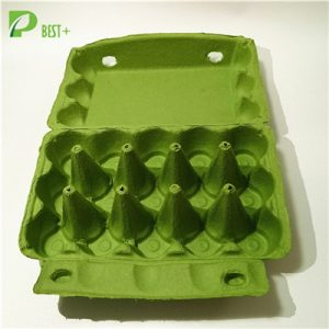 Pulp Egg Carton Production