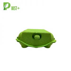 Green Paper Egg Carton 254