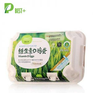 pulp egg cartons
