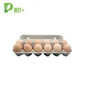 Pulp Dozen Eggs Cartons