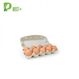 10 Eggs Pulp Cartons Box