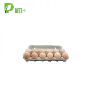 12 eggs pulp cartons Tray