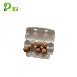 Pulp Cardboard 10 Eggs Cartons Poultry 159