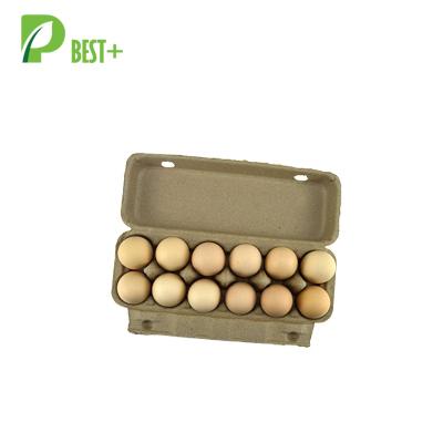 Pulp Cardboard 12 Eggs Cartons 198