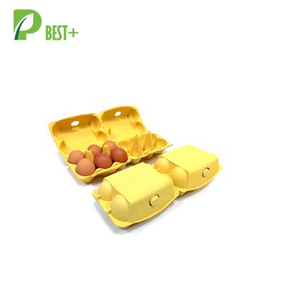 Biodegradable 6 Eggs Pulp Cartons 193