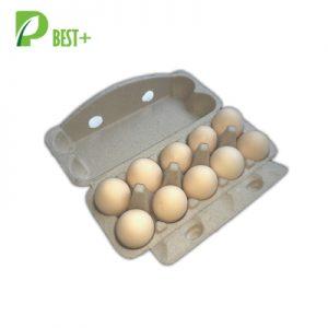 10 Cells Egg Pulp Paper Carton 215
