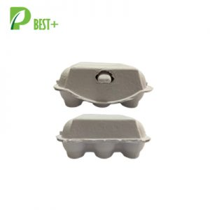 6 Holes White Egg Carton 246