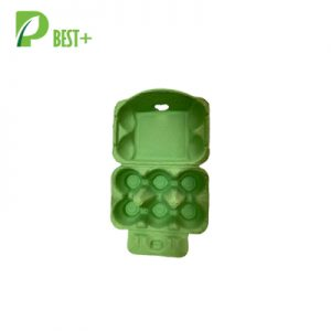 Pulp Egg Cartons 240