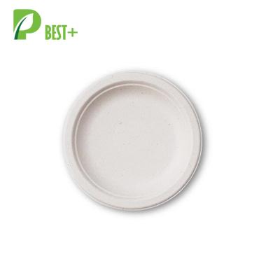 10 Inch Round Tableware 104