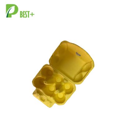 Yellow Egg Carton 260