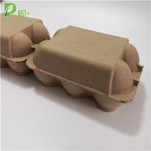 Low Price Egg Carton